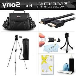 Essential Accessory Kit For Sony HDR-CX430V HDR-PJ430V HDR-C